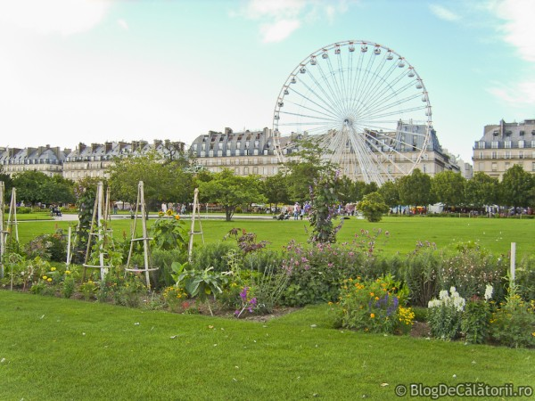 Gradinile-Tuileries-Paris-01